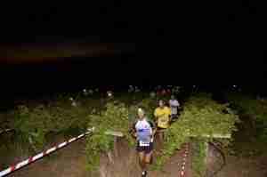 Hollera Run Night 2017