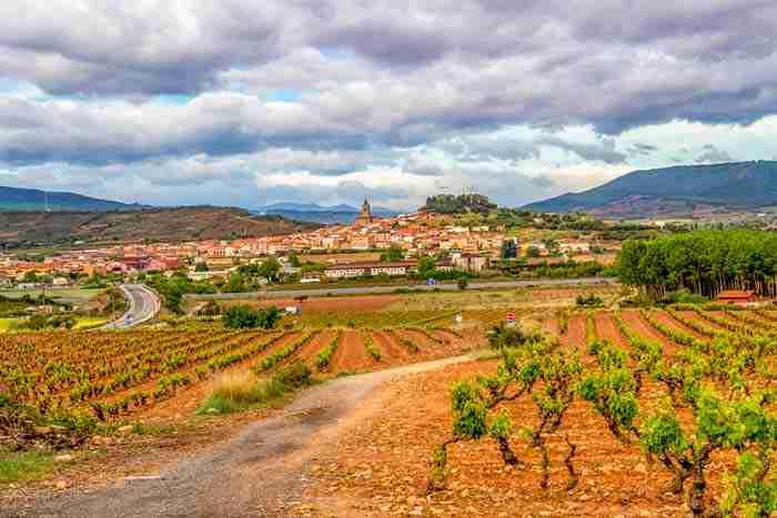 la rioja crisis del vino del siglo 20