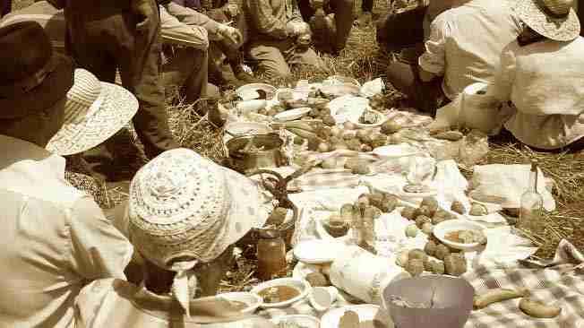 picnics tradicionales en las huertas canarias
