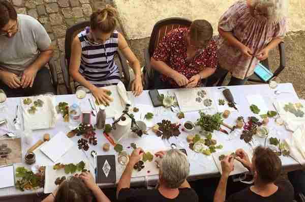 tours enoturísticos grupos para amantes del vino