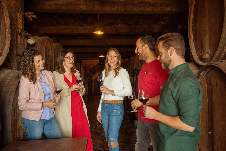 wine and tours programados semanales