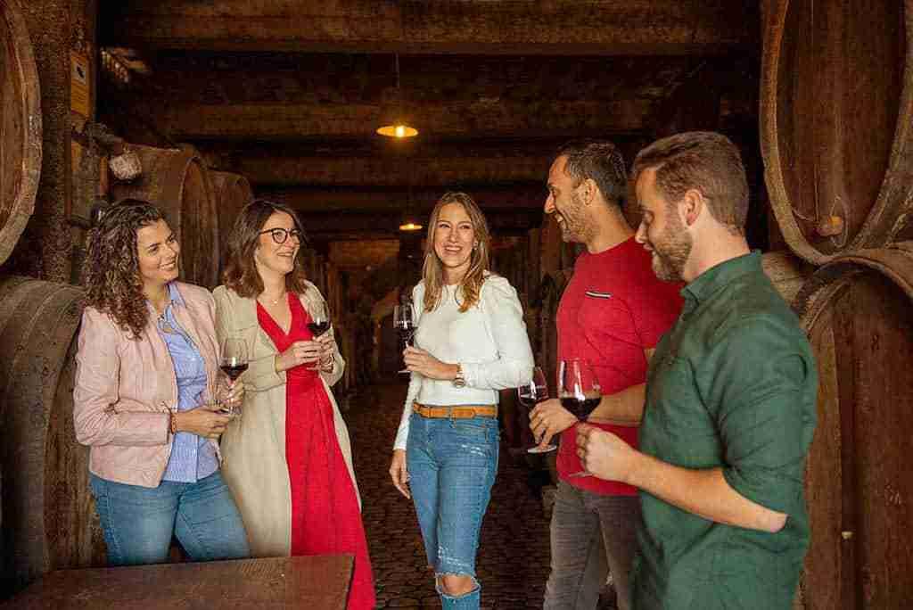 nuevo wine&tours enoturismo y gastroturismo tenerife
